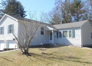 Foreclosed Home in MORGAN CIR, Hyde Park, NY - 12538