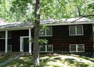 Foreclosed Home en DEL VUE TER, Callicoon, NY - 12723