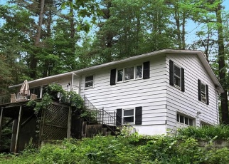 Foreclosed Home en SUMMIT DR, Lake George, NY - 12845
