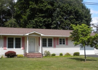 Foreclosed Home en CLUB VIEW DR, Bath, NY - 14810