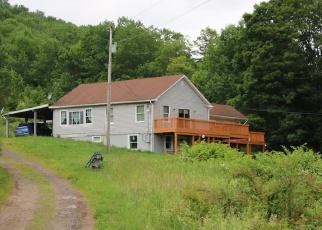 Foreclosed Home en ROBINSON RD, Hamden, NY - 13782