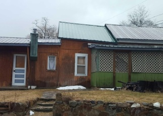 Foreclosed Home in DECKER HILL RD, Hague, NY - 12836