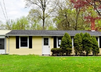 Foreclosed Home en SOUTH RD, Mount Marion, NY - 12456