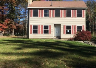 Foreclosed Home en PINECREST DR, West Shokan, NY - 12494