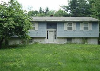 Foreclosed Home en HOLLOW RD, Clinton Corners, NY - 12514