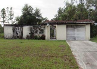 Foreclosed Home en WASHINGTON BLVD NW, Lake Placid, FL - 33852