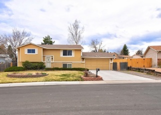 Foreclosure Home in Littleton, CO, 80124,  DENEB DR ID: P1272541