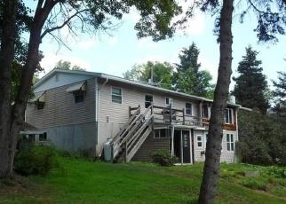 Foreclosed Home en DUNHAM HILL RD, Castle Creek, NY - 13744