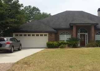 Foreclosed Home en AKRON OAKS DR, Orange Park, FL - 32065