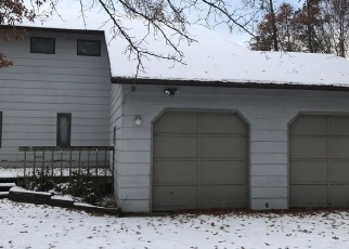 Foreclosed Home en MILL ST NE, Bemidji, MN - 56601