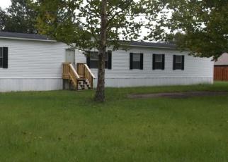 Foreclosed Home en MAYAPPLE CT, Middleburg, FL - 32068