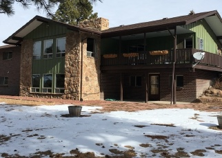 Foreclosed Home en ALPINE DR, Parker, CO - 80134