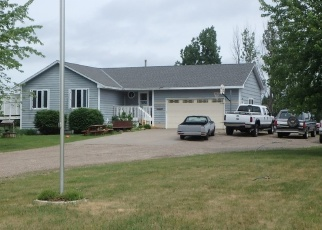 Foreclosed Home en CLEVELAND ST NW, Elk River, MN - 55330