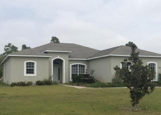 Casa en ejecución hipotecaria in Myakka City, FL, 34251,  82ND AVE E ID: P1288049