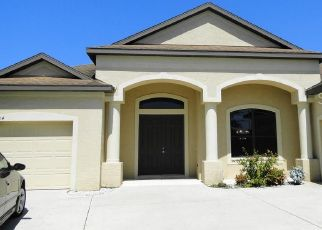Foreclosed Home en 127TH TER E, Parrish, FL - 34219