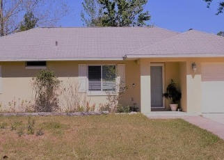 Foreclosed Home en WHITE FEATHER LN, Palm Coast, FL - 32164