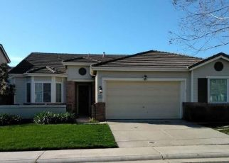 Foreclosed Home en ROAN RANCH CIR, Elk Grove, CA - 95624