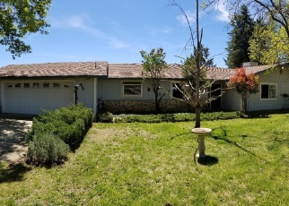 Foreclosed Home en VIEW POINT DR, Placerville, CA - 95667