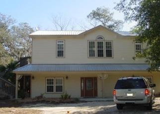 Foreclosed Home en AMELIA LN, Santa Rosa Beach, FL - 32459