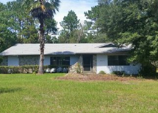 Foreclosed Home en N INDIANHEAD RD, Hernando, FL - 34442