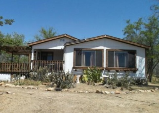 Foreclosed Home en INDIAN PAINT BRUSH RD, Anza, CA - 92539