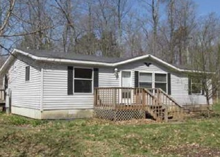 Foreclosed Home en N JOHN ERICSSON AVE, Hayward, WI - 54843