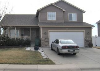 Foreclosed Home en SETTLER RIDGE DR, Mead, CO - 80542