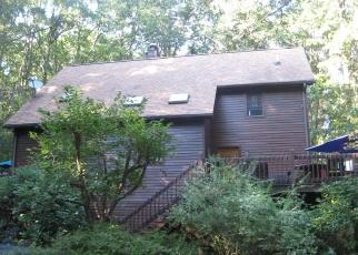 Foreclosed Home en BEAR HOLLOW RD, Elysburg, PA - 17824