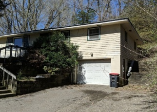 Foreclosed Home en TWIN BLUFF RD, Red Wing, MN - 55066