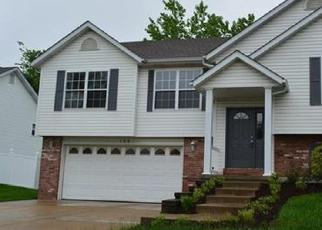 Foreclosed Home en WILLIAMSBURG DR, Crystal City, MO - 63019