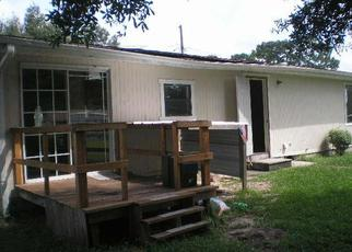 Foreclosed Home in SE 119TH ST, Belleview, FL - 34420