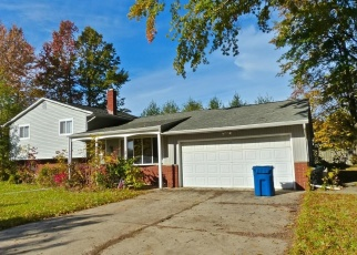 Foreclosed Home en SKINNER AVE, Painesville, OH - 44077