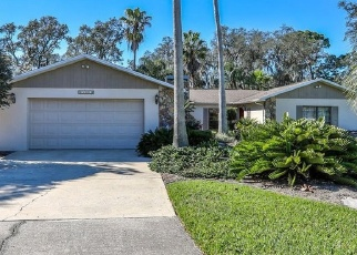 Foreclosed Home in LANSFORD DR, Hudson, FL - 34667