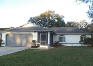 Foreclosed Home in NORTHFIELD PL, Land O Lakes, FL - 34639
