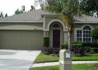 Foreclosed Home en CHEMILLE DR, Lutz, FL - 33558