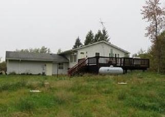 Foreclosed Home en 165TH AVE, Oak Park, MN - 56357