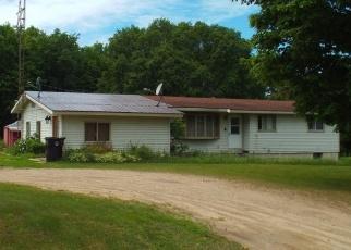 Foreclosed Home en DILLER RD, Germfask, MI - 49836