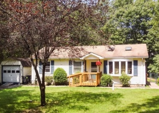 Foreclosed Home en LOCUST LN, Albrightsville, PA - 18210