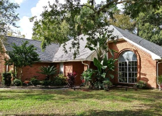 Foreclosed Home en NAUTILUS RD, Middleburg, FL - 32068