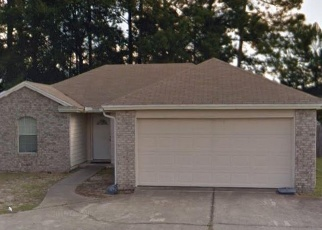 Foreclosed Home in LOVELAND PASS DR E, Jacksonville, FL - 32210