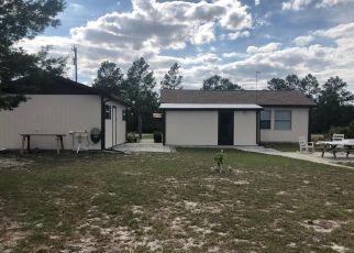 Casa en ejecución hipotecaria in Lake Placid, FL, 33852,  FLAMINGO ST ID: P1336576