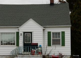 Foreclosure Home in Erie, MI, 48133,  S DIXIE HWY ID: P1376833