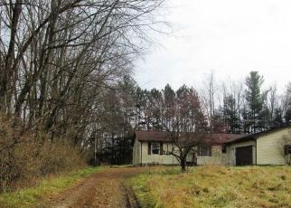 Foreclosure Home in Steuben county, IN ID: P1389471