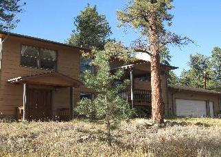Foreclosure Home in Bailey, CO, 80421,  FITZSIMMONS RD ID: P1402910