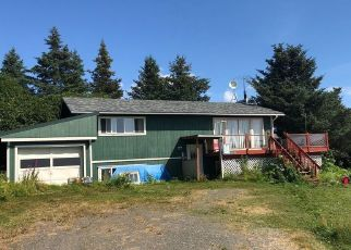 Foreclosure Home in Homer, AK, 99603,  BROWN DR ID: P1403671