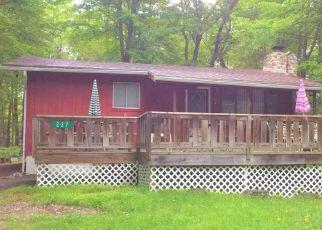 Casa en ejecución hipotecaria in Pocono Lake, PA, 18347,  PAIUTE PATH ID: P1411527
