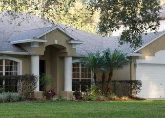 Foreclosure Home in Lutz, FL, 33549,  SWENSON TER ID: P1421281