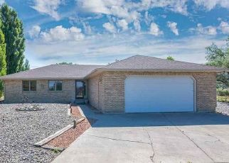 Foreclosure Home in Montrose, CO, 81401,  STAR RIDGE CT ID: P1460370