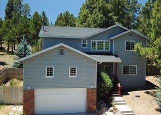 Foreclosure Home in Flagstaff, AZ, 86004,  E ABINEAU CANYON DR ID: P1477712