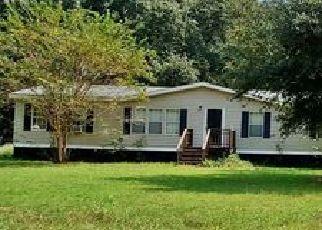 Casa en ejecución hipotecaria in Hampton Condado, SC ID: P1496225